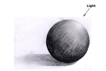 D Source Pencil Illustration Of Tree Tree Module D