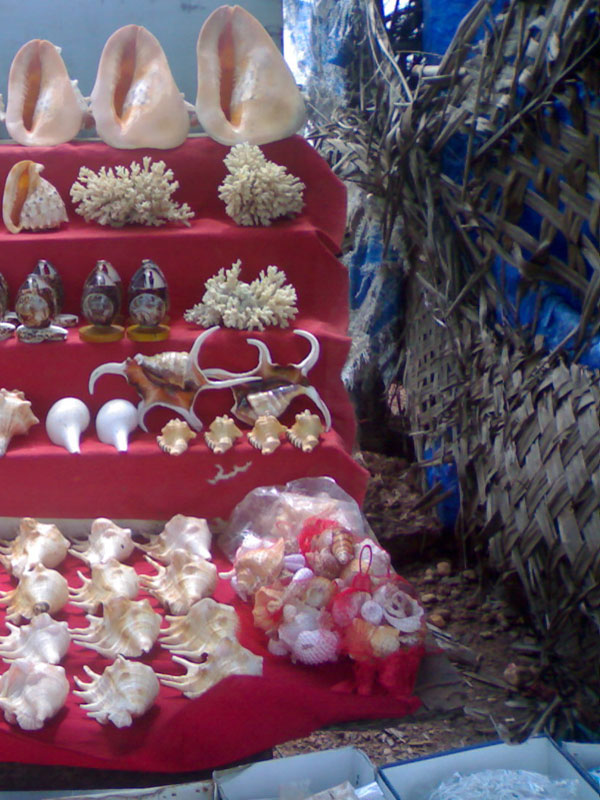 D'source Design Gallery On Goa Crafts