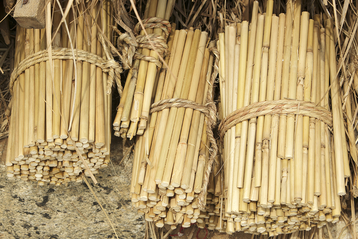 Bamboo - is a raw material of natural origin, has long been used by man in everyday life. More than two centuries ago it was used for the construction of houses, bridges, boats, home paraphernalia, musical instruments. In eastern medicine, the plant was used as a sedative and cosmetic 8