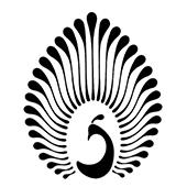 d source erstwhile logos in calligraphy logos d source digital