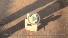 Orian Wooden Toys - Sonpur, Orissa