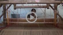 Cotton Sari Weaving - Yadgiri