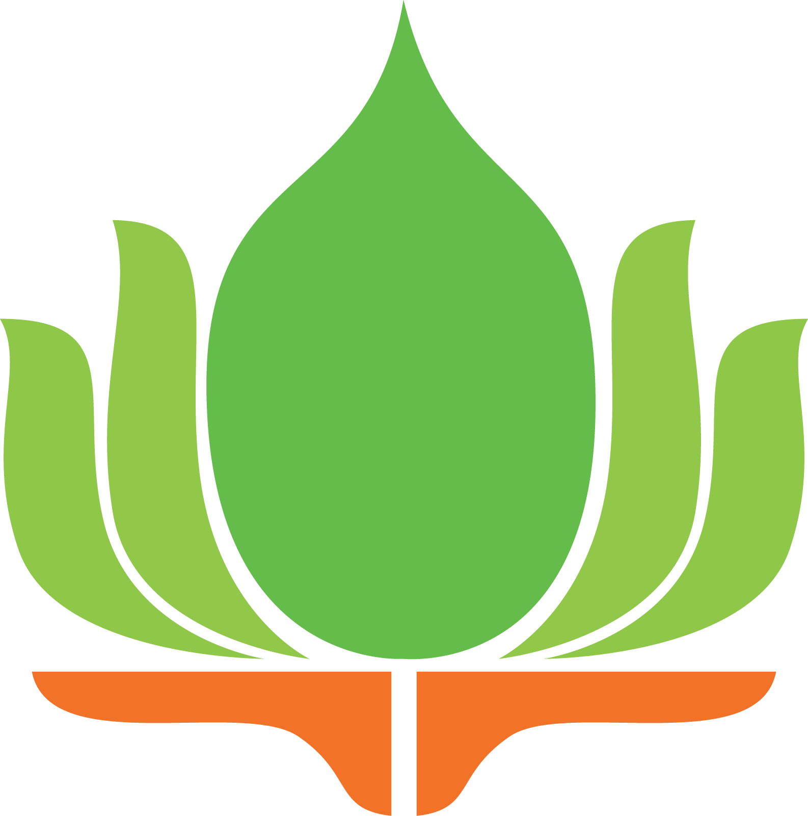 Lotus Wall Decor